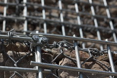 GABION WALL. With fastening element Royalty Free Stock Images
