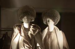 Gablota wystawowa handlu detalicznego szczegół Fotografia Royalty Free