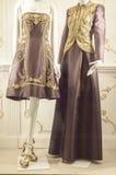 Gablota wystawowa handlu detalicznego szczegół Zdjęcie Royalty Free
