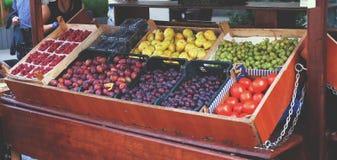 Gablota wystawowa z owoc Zdjęcie Royalty Free