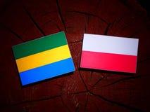 Gabon flag with Polish flag on a tree stump isolated. Gabon flag with Polish flag on a tree stump royalty free illustration