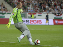 Gabor Kiraly Stock Images