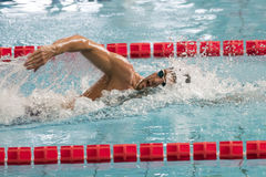 Gabriele Detti swimmer during 7th Trofeo citta di Milano swimming competition. MILAN, ITALY - March 10, 2017: Gabriele Detti swimmer during 7th Trofeo citta di royalty free stock photo