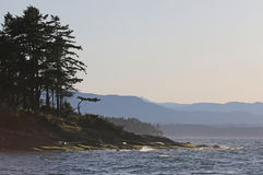 Gabriola wyspy linii brzegowej sylwetka Zdjęcie Stock