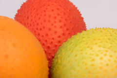 Gac, μωρό jackfruit, κολοκύθα Cochinchin, ακανθωτή πικρή κολοκύθα, γλυκιά κολοκύθα Στοκ Εικόνες