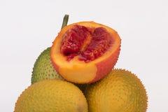Gac, μωρό jackfruit, κολοκύθα Cochinchin, ακανθωτή πικρή κολοκύθα, γλυκιά κολοκύθα Στοκ Εικόνα