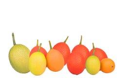 Gac, μωρό jackfruit, κολοκύθα Cochinchin, ακανθωτή πικρή κολοκύθα, γλυκιά κολοκύθα Στοκ Φωτογραφίες