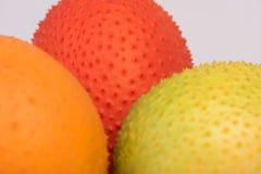 Gac, Baby jackfruit, Cochinchin-pompoen, Doornige bittere pompoen, Zoete pompoen Stock Foto