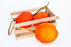 Gac Frucht, SchätzchenJackfruit Stockbild