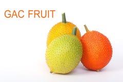 Gac fruit, Baby Jackfruit Stock Images