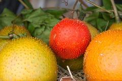 Gac fruit Royalty Free Stock Images