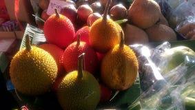 Gac frukt Royaltyfria Foton