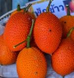 Gac frukt Royaltyfri Fotografi