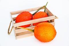 Gac frukt, behandla som ett barn jackfruiten Fotografering för Bildbyråer