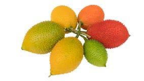 Gac porte des fruits, cochinchinensis de Momordica d'isolement sur le backgrou blanc image stock
