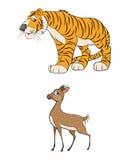 Gacela y tigre Foto de archivo libre de regalías