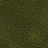 Gada Skóry Krokodyla Tekstura Obrazy Stock