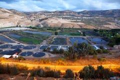 gaderhamat israel Arkivbilder