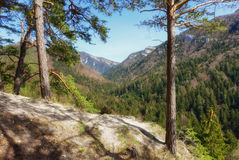 Gaderska valley, SLovakia Royalty Free Stock Photos