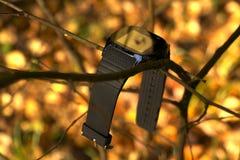 Gadget на ветке дерева royalty free stock photography