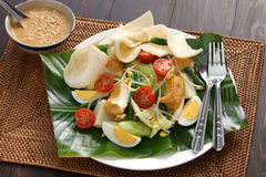 Gado di Gado, insalata indonesiana con la salsa dell'arachide Immagini Stock Libere da Diritti