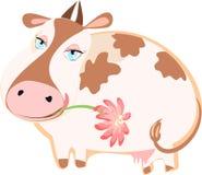 Gado feliz com uma flor Imagem de Stock Royalty Free