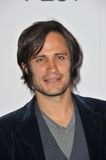 Gael Garcia Bernal Royalty Free Stock Photos