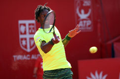 Gael Monfils Stock Photo