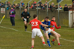 Gaelic Football Royaltyfria Foton
