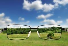 Gafas de sol. Fotos de archivo
