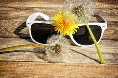 Gafas de sol blancas Foto de archivo libre de regalías