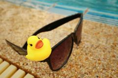 Gafas de sol con el pato de goma amarillo en la piscina Imagenes de archivo