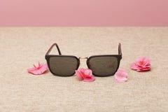 Gafas de sol de Brown en lona foto de archivo libre de regalías