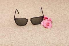 Gafas de sol de Brown en lona fotografía de archivo libre de regalías