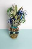 Gafas de sol de la piña Imágenes de archivo libres de regalías