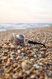 Gafas de sol en la arena de la playa Foto de archivo