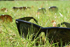 Gafas de sol en la hierba Imagen de archivo libre de regalías