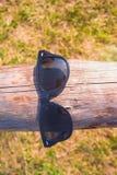 Gafas de sol en un registro de madera fotografía de archivo libre de regalías
