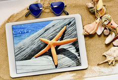 Gafas de sol, estrellas de mar en una tableta y conchas marinas Fotos de archivo libres de regalías