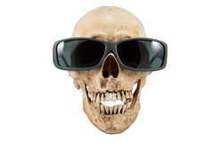 Gafas de sol principales esqueléticas de las mercancías de Halloween Fotos de archivo libres de regalías