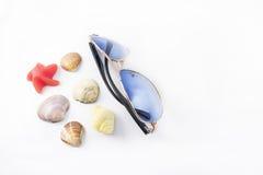 Gafas de sol y caracoles marinos Fotografía de archivo