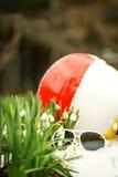 Gafas de sol y una pelota de playa entre porciones de nivalis del galanthus, fotografía de archivo libre de regalías