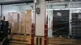 Gaffeltruck av paletter för transportföretagspåfyllning med gods i lastbil stock video
