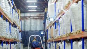 Gaffeltruck som laddar stora säckar av korn i materiel stock video