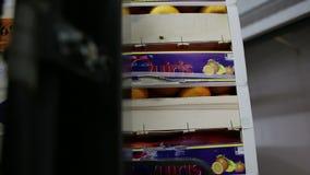 Gaffeltrucken av ger lastar av gods i släpet av den halva lastbilen arkivfilmer