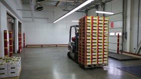 Gaffeltrucken av transportföretaget lastar av paletter med gods från lastbilen arkivfilmer