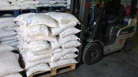 Gaffeltrucken av transportföretagspåfyllningen och lastar av paletter med ris stock video