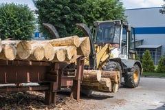 Gaffeltrucken griper trä i en wood bearbetningsanläggning Stor journalladdare som lastar av en journallastbil i journalgården på  royaltyfri fotografi