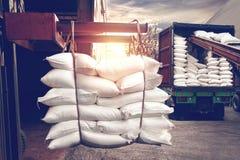 Gaffeltrucken som behandlar påsar för vitt socker som stoppar in i en behållare, åker lastbil royaltyfri bild
