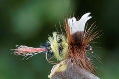 Gaffez la mouche d'imitation de pêche de mouche d'abeille Image stock